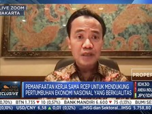 Kemenko: Jangan Cuma Pasar Indonesia, Ayo Incar Pasar RCEP