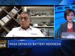 Bahan Baku Hingga Pasar, Potensi Pengembangan EV Battery RI