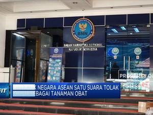 BNN Ajak Negara ASEAN Tolak Ganja Sebagai Tanaman Obat