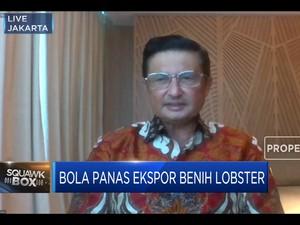 Fadel Muhammad: Ada 3 Celah Di Kasus Ekspor Benih Lobster
