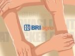 Resmi! BRI Agro Daftar Jadi Bank Digital ke OJK