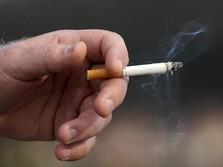 Masih Banyak Bocah 'Ngebul' Rokok, Jadi Alasan Cukai Naik