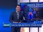 Kacau Balau Data Covid-19 RI