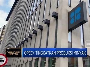 OPEC+ Sepakat Tingkatkan Produksi Minyak
