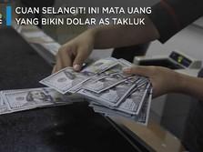 Cuan Selangit! Ini Mata Uang yang Bikin Dolar AS Takluk