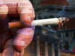 Ketimbang PPN, Faisal Basri Usul Tarif Cukai Rokok Naik!