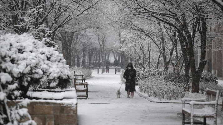 A resident wearing a face mask as a precaution against the coronavirus walks a dog through snow in Goyang, South Korea, Sunday, Dec. 13, 2020. (AP Photo/Lee Jin-man)