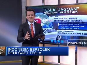 Indonesia Bersolek Demi Gaet Tesla