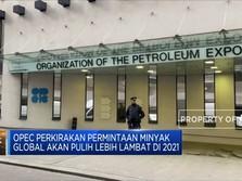 OPEC: Permintaan Minyak akan Pulih Lebih Lambat di 2021