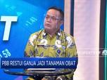 BNN Tegaskan Indonesia Tetap Tolak Penggunaan Ganja!