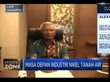 Hilirisasi Nikel Butuh Insentif Bank Hingga Infrastruktur