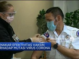 Menakar Efektivitas Vaksin Terhadap Mutasi Virus Corona