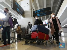 Duh, Hampir 50% Agen Perjalanan RI Sudah Berhentikan Karyawan