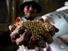 Mendag Blak-Blakan RI Terpaksa Impor 90% Kedelai