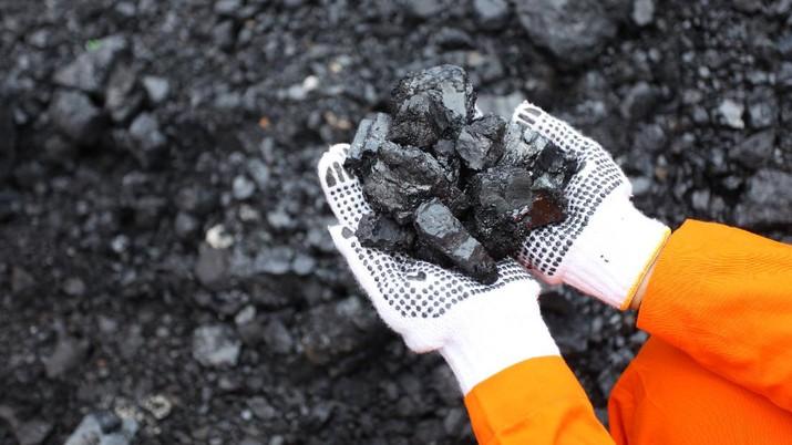 PT Bukit Asam Tbk (PTBA) kembali mewujudkan komitmennya dalam upaya hilirisasi dan peningkatan nilai tambah pertambangan batu bara. Salah satunya adalah dengan memproduksi karbon aktif dari bahan baku batu bara.