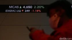 Fenomena Investor Newbie: Lupa Diri hingga Beli Saham Pakai Utang