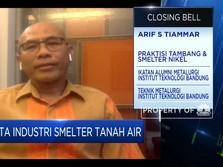 Infrastruktur, Kendala Pembangunan Smelter di Indonesia