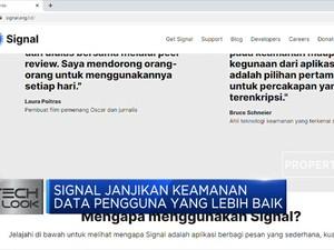 Signal dan Telegram Laris Manis