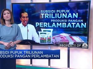 Subsidi Pupuk Triliunan, Produksi Pangan Perlambatan
