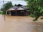 Banjir Kalsel Akibat Lahan Sawit & Tambang? Ini Jawaban BNPB