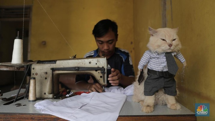 Penjahit Fredi Lugina Priadi menjahit pesanan kostum karakter di Parung Bogor, Jawa Barat, Jumat 15/1/2021.   Fredi membuat berbagai pakaian kucing mulai dari pakaian yang mirip dengan pakaian manusia, sampai pakaian karakter seperti saat cosplay. Fredi juga menambahkan aksesoris pelengkap penampilan kucing seperti topi, tas, dan berbagai aksesoris lainnya. Ia juga menambahkan tangan boneka yang berbentuk seperti kaki kucing pada bagian lengan kostum. Ia memulai usaha nya sejak 2017 lalu
