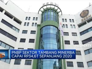 PNBP Sektor Tambang Minerba Capai Rp 34,6 Triliun di 2020