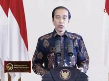 Resmi Dilantik! Ini Sepak Terjang 3 Anggota Dewas SWF Jokowi
