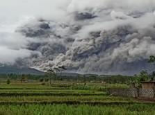 Cegah Korban, Pemerintah Bikin SMS Blast Waspada Bencana