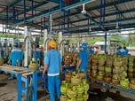 Pemerintah Pastikan Stok BBM & LPG di Sulbar dan Kalsel Aman