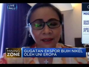 Ekspor Nikel Dilarang, APNI Harap Serapan Domestik Maksimal