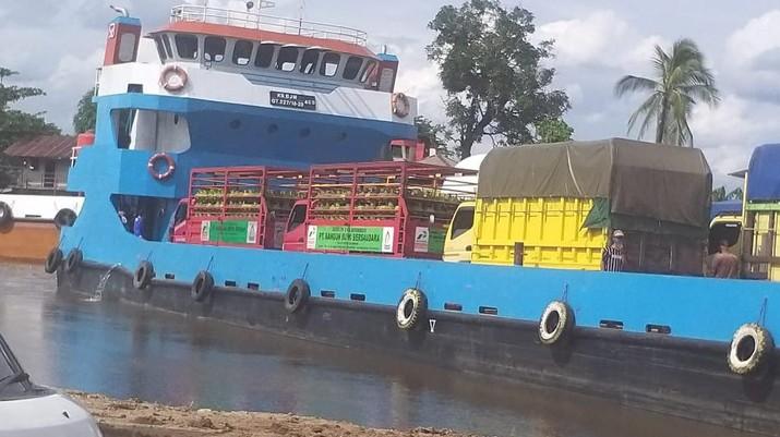 Pertamina penuhi LPG di area terdampak banjir di kalimantan. (Dok: Pertamina)
