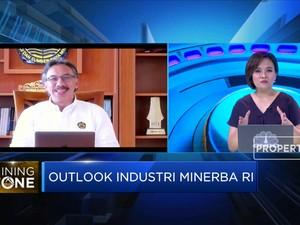 Dirjen Minerba: Insentif, Daya Tarik Investasi Sektor Nikel