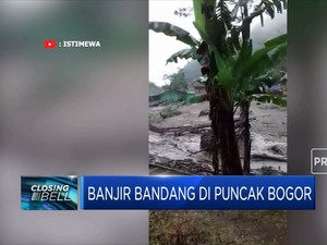 Hujan Deras! Banjir Bandang Hantam Kawasan Puncak Bogor
