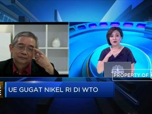 Kadin: Penghentian Ekspor Bijih Nikel Baik Bagi Neraca Dagang