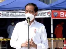 Kapan Jokowi Lantik Anggota Dewas Dana Abadi SWF?