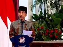 Nah Ini Dia! Calon Direksi Dana Abadi SWF Jokowi