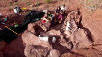 Inikah Wujud Fosil Dinosaurus Terbesar di Bumi?