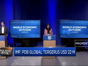 IMF Ramal PDB Global 2020-2025 Tergerus USD 22 M