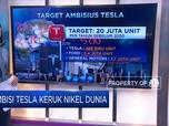 Ambisi Tesla Keruk Nikel Dunia