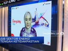 Langkah PLN & Pertamina Kejar Target Bauran Energi Terbarukan