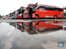 Nah Lho! Mudik Dilarang, Bisnis Bus Akap Makin Megap-Megap