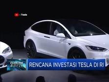 Bahas Investasi, Pemerintah & Tesla Akan Bertemu Pekan Depan