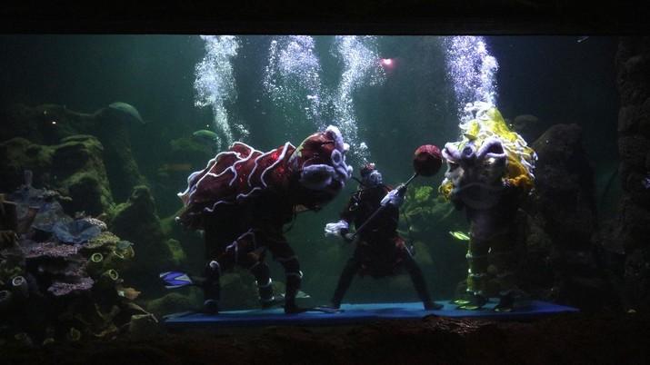 Barongsai Underwater (CNBC Indonesia/ Tri Susilo)