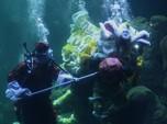 Sambut Imlek, Atraksi Barongsai dalam Aquarium Raksasa