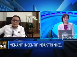 Strategi Mendorong Investasi Pemanfaatan Nikel Kadar Rendah