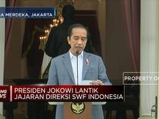 Ini Dia Profil Direksi SWF INA Pilihan Jokowi