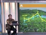 Agresif! Bank Mega Targetkan Laba Bersih Rp 3,5 T di 2021