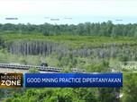 Banjir Kalimantan, Good Mining Practice Dipertanyakan
