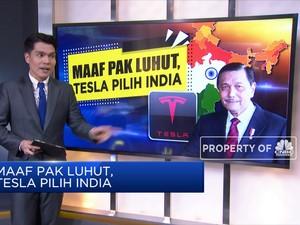 Maaf Pak Luhut, Tesla Pilih India
