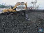 2 Proyek Gasifikasi Batu Bara Ditargetkan Beroperasi di 2024